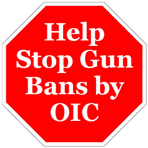 Help Us Stop Gun Bans by Order in Council