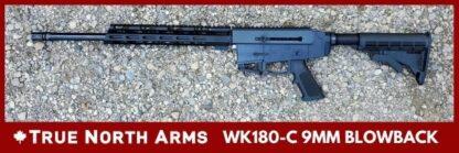 True North Arms 180C 9mm Blowback